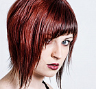 Color - The Mane Attraction Hair Studio